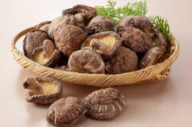 美味しい椎茸出汁の取り方